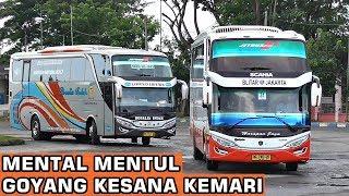 Video BUS BERGOYANG KESANA KEMARI | Hunting Bis di Terminal Kertonegoro Ngawi MP3, 3GP, MP4, WEBM, AVI, FLV Juni 2018