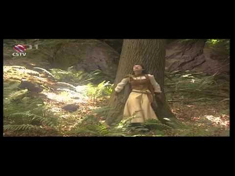 Pohádka Královny kouzelného lesa