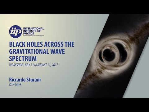 Binary coalescence from primordial black holes - Riccardo Sturani