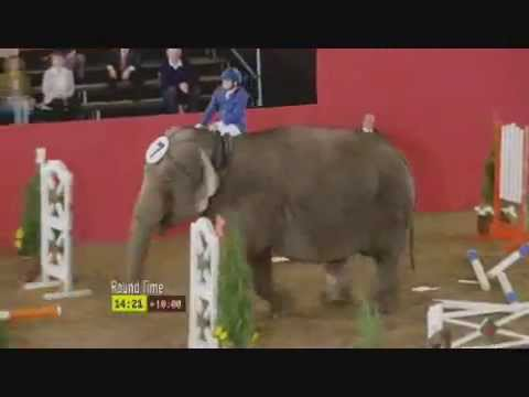 Funny Elephant Show Jumping Commercial Advertisement to Carlton Lager Beer Dry Dreams Australia 2009