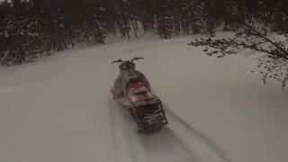10. Tree Riding & Meadow Powder - Ski-Do Freeride 137