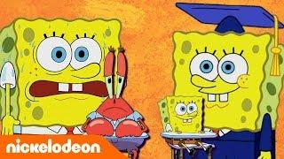 Bob Esponja   Aprender de Bob Esponja   Pt.2   España   Nickelodeon en Español