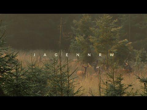 Rotwildjagd im August – Jägerglück im Morgentau – Hunt on Demand FreeEpisode – jagenNRW – HOD – Jagd