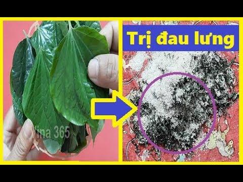Chữa khỏi đau lưng đơn giản nhờ vị thuốc ngay trong vườn nhà bạn - Thời lượng: 4 phút, 45 giây.