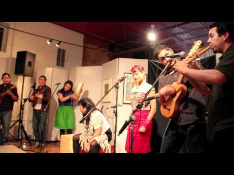 Las Cafeteras Chicago Tour Highlights