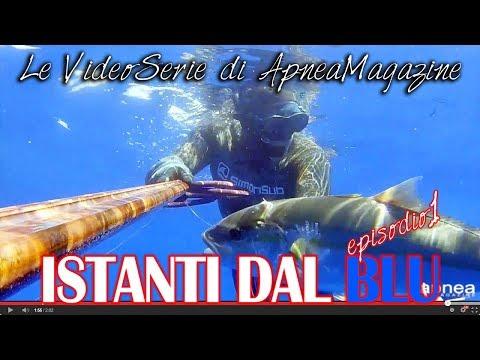 Pescasub Profonda: La Ricciola del Relitto - Apnea Magazine