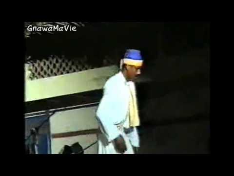 GnawaMaVie & Festival Gnaoua et Musiques du Monde