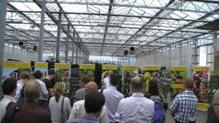 #194 Züfos Vortrag - Vergleich von Erwerbsanbau und Hausgartenmarkt