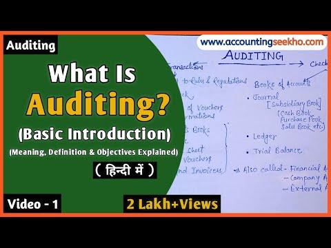 Auditing किसे कहते हैं? Auditing के Objectives क्या-क्या होते हैं? l Full Introduction (हिन्दी में)