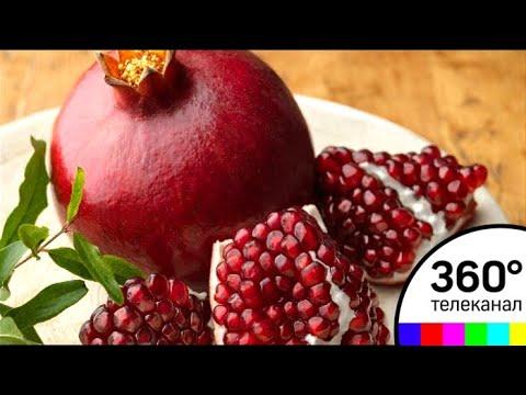 ВНикитском ботаническом саду Крыма начали сбор урожая экзотических фруктов