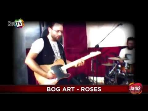 Bog art ~ Roses (The Icy Game of Reason)