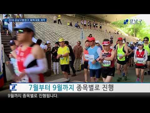 2018 강남구청장기 체육대회 개막