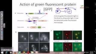 Plant biotechnology 3