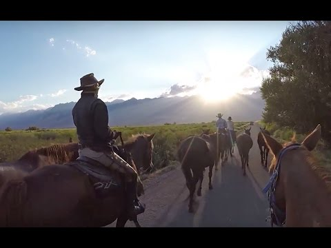 Harbor House Life: Horseback Riding in the Sierra Mountains