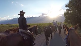 Horseback Riding in the Sierra Mountains