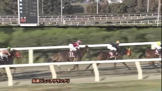 2013年兵庫ジュニアグランプリ