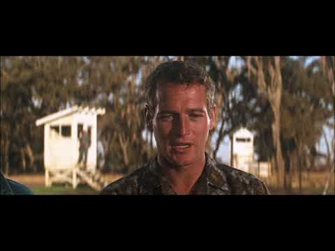Cool Hand Luke(1967) - Arriving to the Florida prison farm