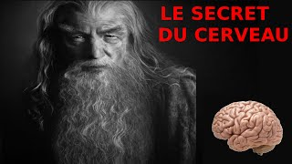 Le secret du cerveau