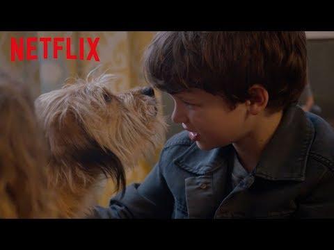BENJI | Tráiler oficial | Netflix
