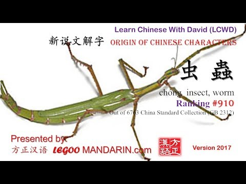 Origin of Chinese Characters - 0910 虫 蟲 chóng insect, worm - Learn Chinese with Flash Cards