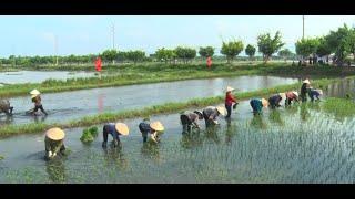 Lễ hội xuống đồng xã Điền Công năm 2019