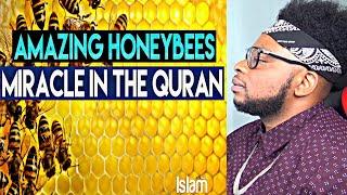 Video How Honeybees Prove The Existence of Allah (Must Watch!) MP3, 3GP, MP4, WEBM, AVI, FLV Januari 2019