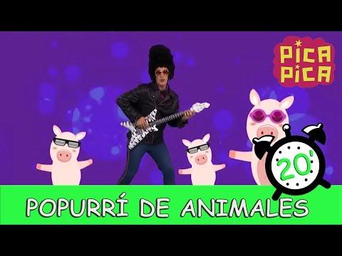 Pica - Pica - Popurrí de Animales (20 minutos)
