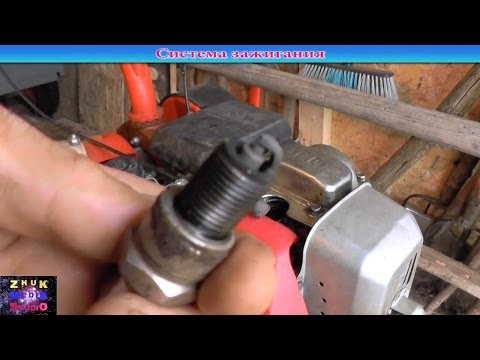 руководство по эксплуатации двигателя мотоблока салют 100