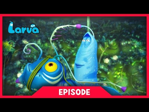 LARVA - LARVATAR - AVATAR LARVA| 2017 Cartoon Movie | Cartoons For Children | 라바 | LARVA Official