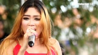 Seketip Mata -  Desy Paraswaty -  Naela Nada Live Playangan Gebang Cirebon Video