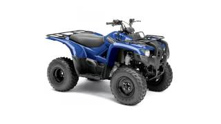 3. yamaha big bear 250 semi auto 2x4