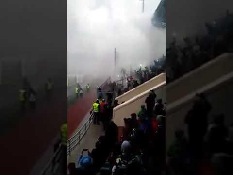 Полиция предотвратила драку фанатов после матча «Тосно» – «Динамо»