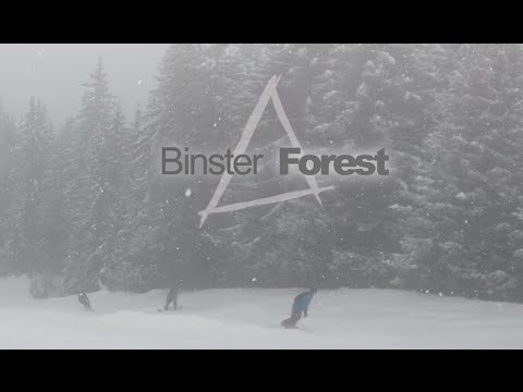 0 Binster   Forest (LaTania Video)