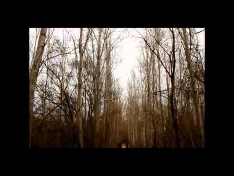 Ramy ayash _ ma badi shi clip by Chadi nakhle (видео)