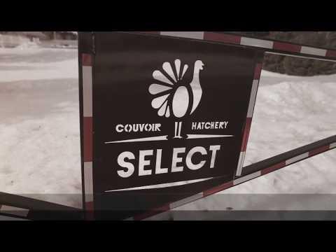 Gala Edis 2017 | Relève d'entreprise - Couvoir Select