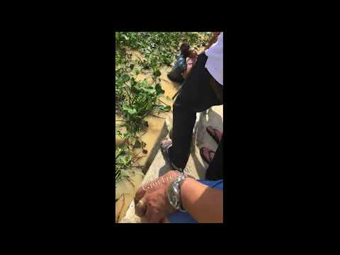 Khánh Hòa: Thanh niên bị điện giật chết khi đang bắt ốc :(
