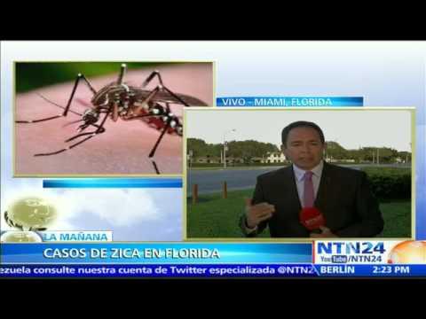 Departamento de Salud de EE.UU. confirma tres casos del virus Zika en el estado de Florida