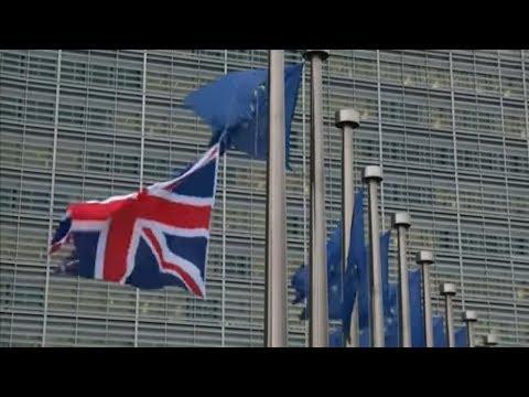 WHISTLEBLOWER WYLIE: Der Brexit wäre ohne Datenskan ...