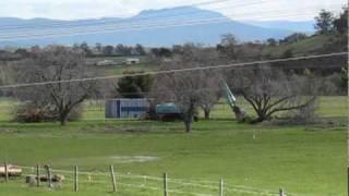 Hadspen Australia  city photos gallery : Historical Orchard Destruction, Hadspen, Tasmania