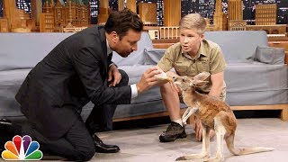 Video Robert Irwin and Jimmy Feed a Baby Kangaroo MP3, 3GP, MP4, WEBM, AVI, FLV Juli 2019