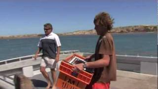 Kalbarri Australia  city pictures gallery : How to Catch Crayfish in Kalbarri, Western Australia