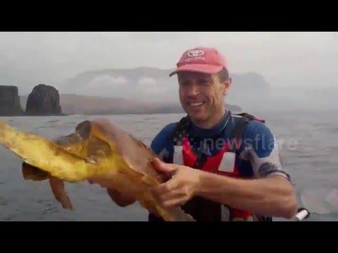 這位男子看到海中有生物朝他的小船靠近,順手撈起後…眼前的景象太令人震驚了!