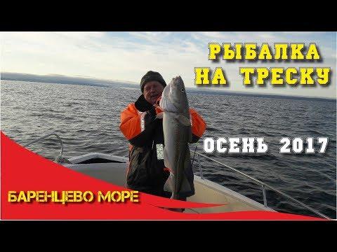 морская рыбалка на треску