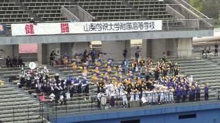 山梨学院大付属高校 さくらんぼ~SUNNY DAY SUNDAY~エルクンバンチェロ