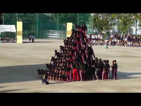 伊丹市天王寺川中学校 2013,9,28, 10段ピラミッド