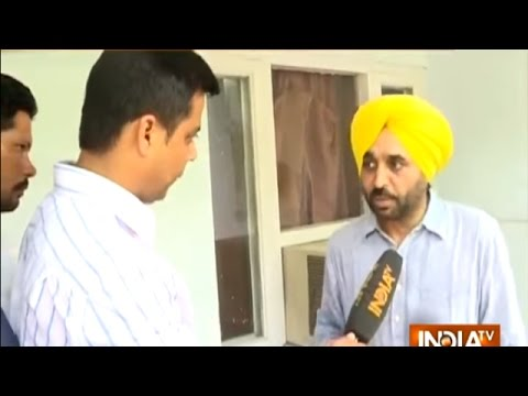 I will plan my action after panel's probe: Bhagwant Mann
