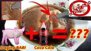Video TERBUKTI!!! Experimen Daging Babi Kasih Coca Cola Alhasil??? MP3, 3GP, MP4, WEBM, AVI, FLV Maret 2019