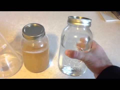 How to Harvest Yeast From a Bottle of Beer and Make a Yeast Starter for Home Brewing!