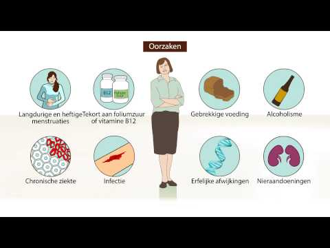 Wat is Bloedarmoede? – Symptomen en behandeling