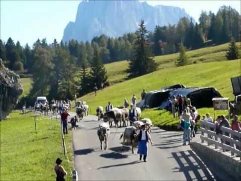 Transumanza Alpe di Siusi-Castelrotto